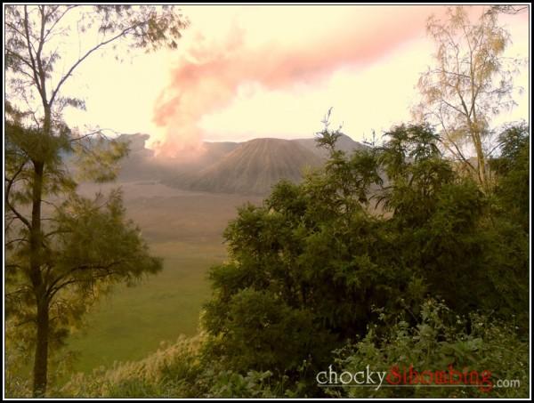 bromo wisata erupsi (4)