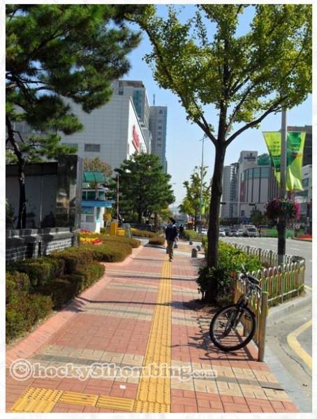suwon-pedestrian-paths