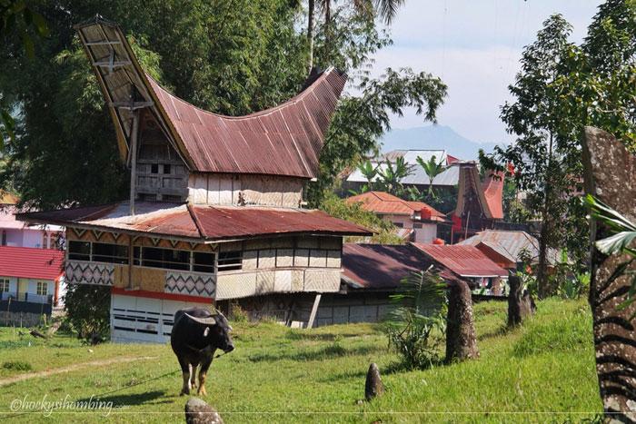 Rantekarasik-Toraja-2
