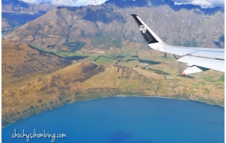 air-new-zealand-flight