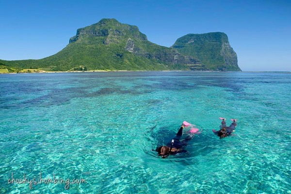 Snorkeling-at-Ned's-Beach-Lord-Howe-Island