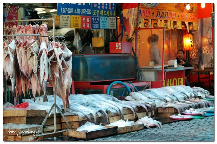 jagalchi-fish-market-busan